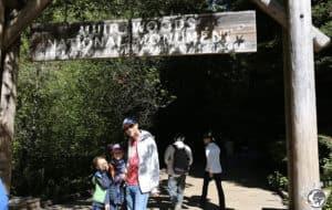 L'entrée de muir woods près de San Francisco