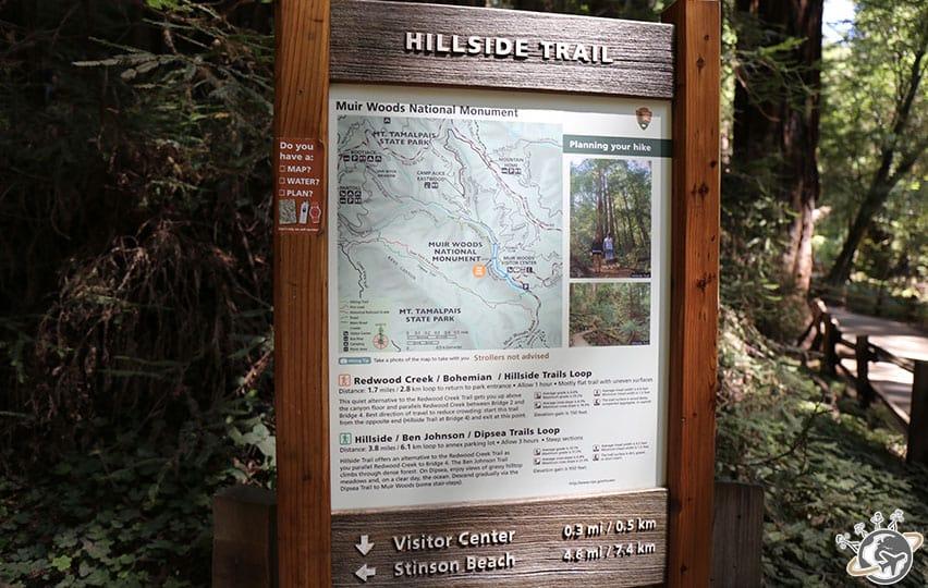 Les différentes randonnées de muir woods près de San Francisco