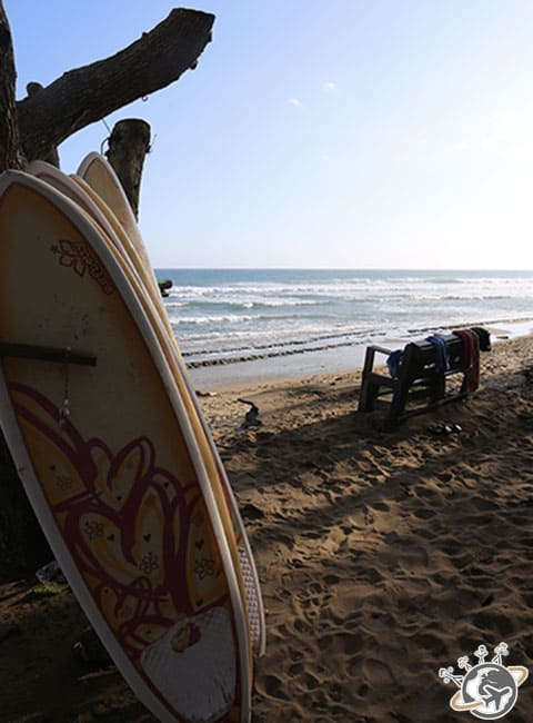 Les planches de surf sur la playa Encuentro à Puerto Plata, République dominicaine