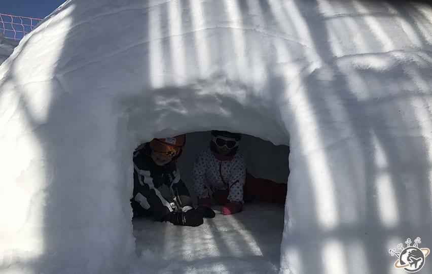 Pause dans l'igloo pour Noé et ses copains.