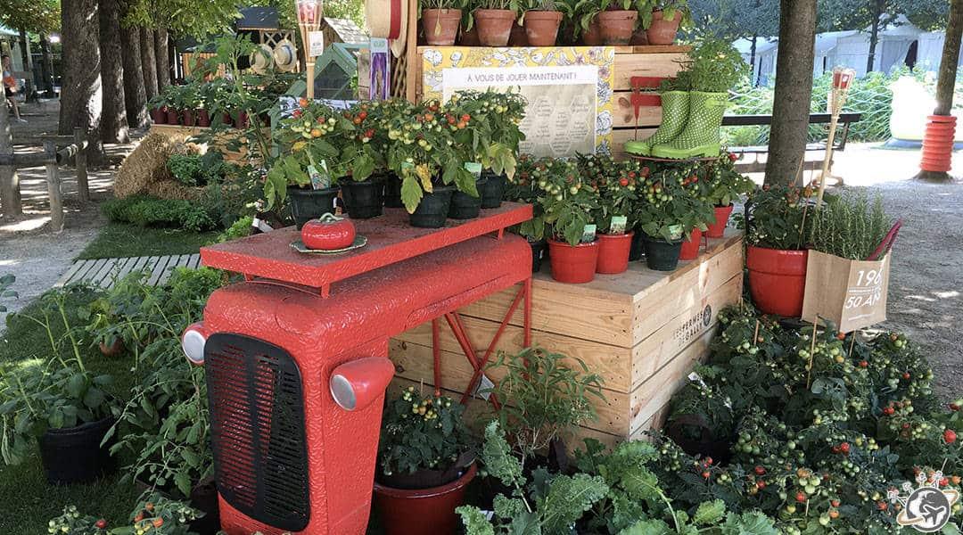 Jardins jardin aux tuileries pour tous ceux qui aiment for Tous aux jardins