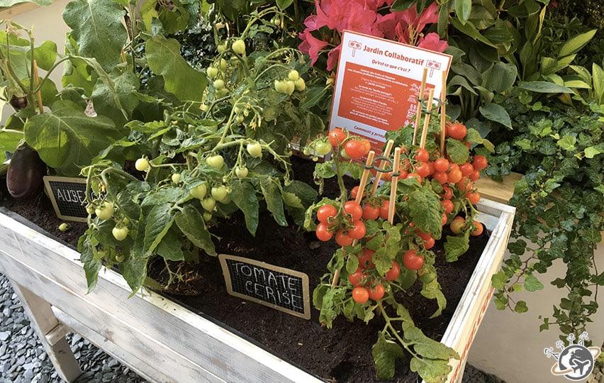 Le jardin éphémère de Jardiland est très réussi