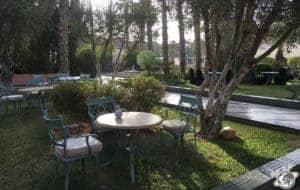 Dans le jardin de l'hôtel la Palmeraie