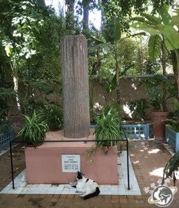Le Jardin Majorelle - hommage à Yves Saint Laurent