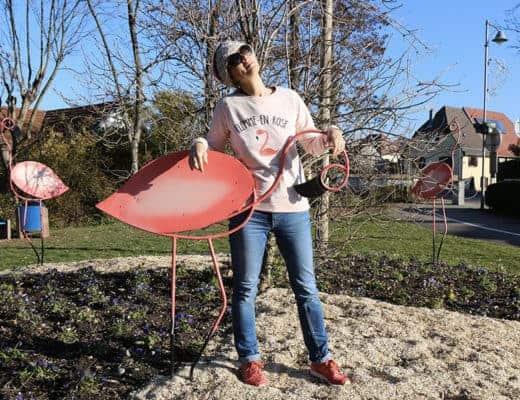 moi et les flamands roses