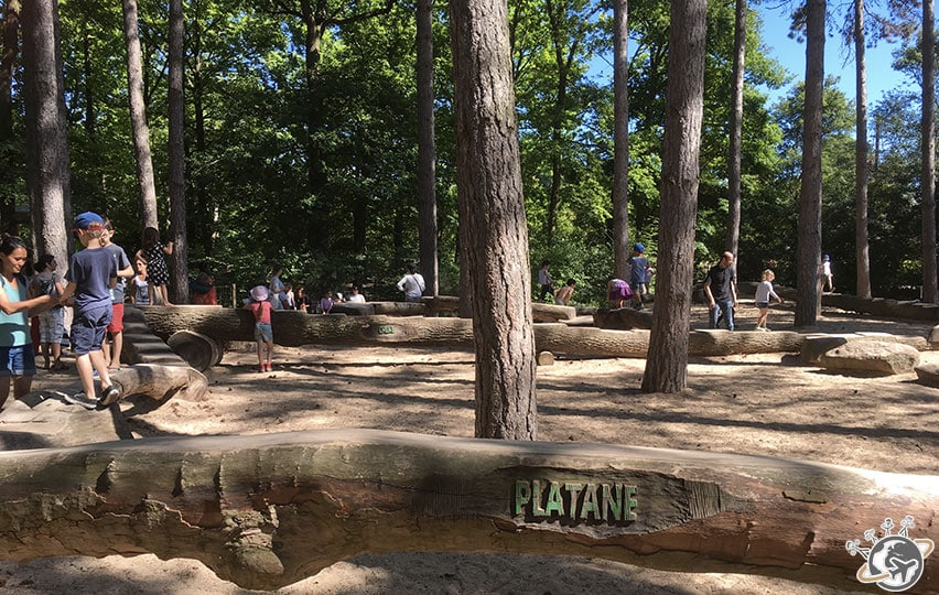 L'aire de jeux avec les noms des arbres