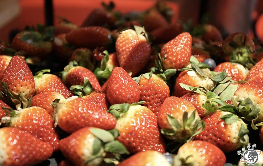 Petit déjeuner fraises, c'est assez sympa.
