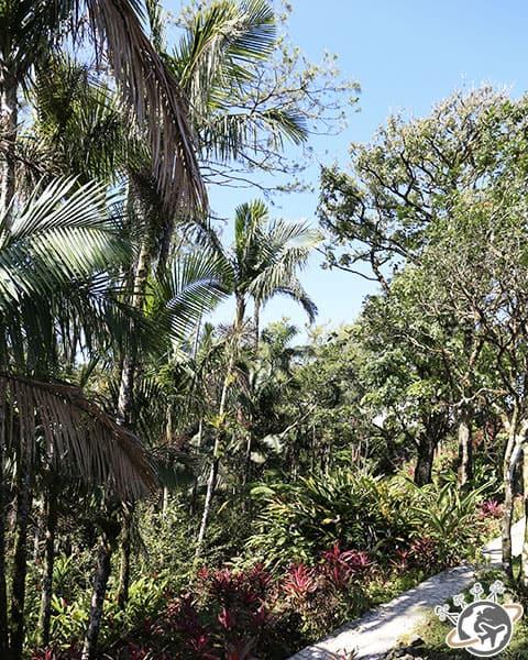 Le parc en haut du teleferico de Puerto Plata
