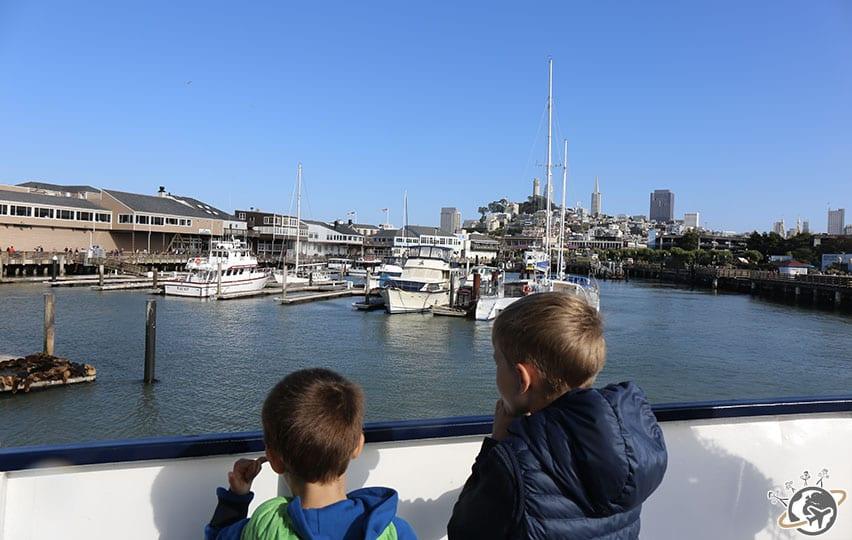 Les lions de mer vus du bateau à San Francisco