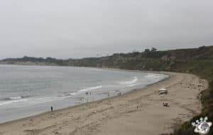 Rinkon, le spot de surfeurs à Santa Barbara en Californie
