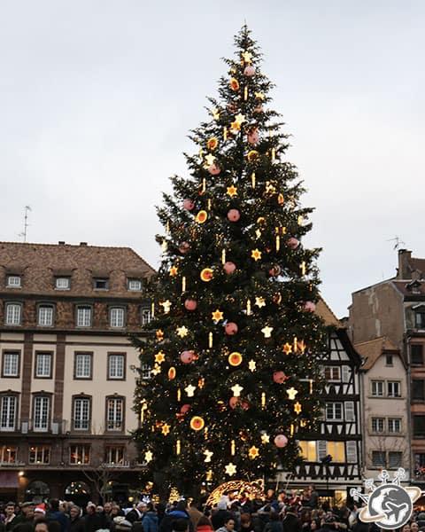 Le sapin géant place Kléber à Strasbourg
