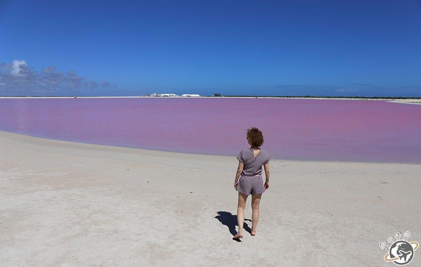 Le lac Rose à Las Coloradas dans le Yucatan au Mexique